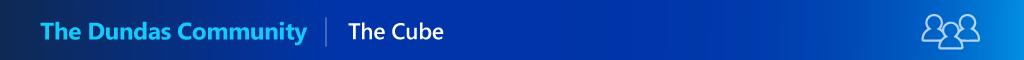 Dundas Data Visualization logo